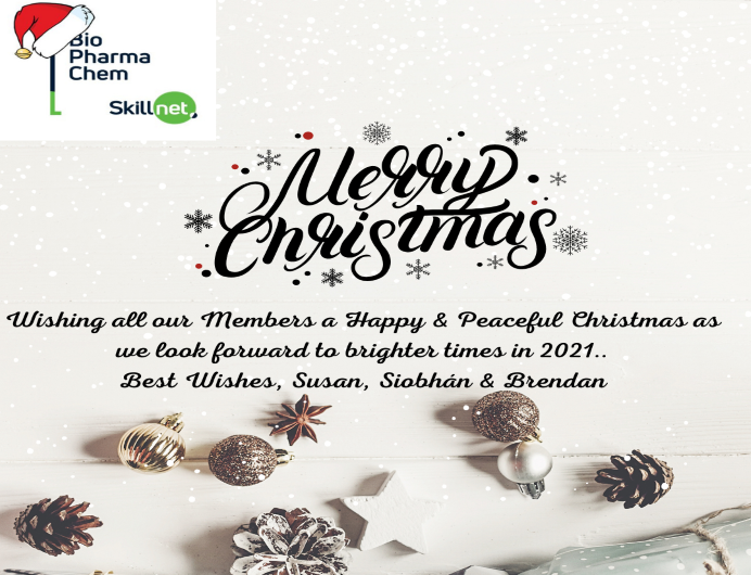 Happy Christmas from all at BPC Skillnet